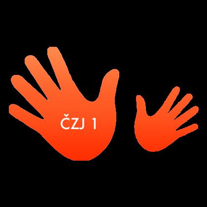 RUCE-CZJ-1